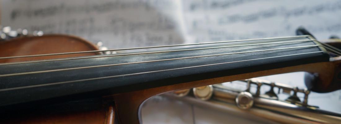 Unterricht Violine Geige Gesang Moosburg Neubert